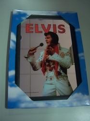 Elvis Presley spiegel 30 x 20 cm