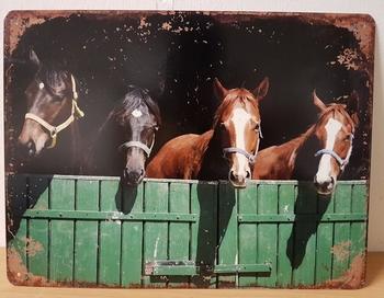 Paarden op stal metalen poster