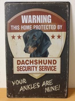 Teckel dachshund security metalen wandbord