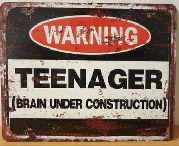 Warning teenager brain under construction metalen wandbord