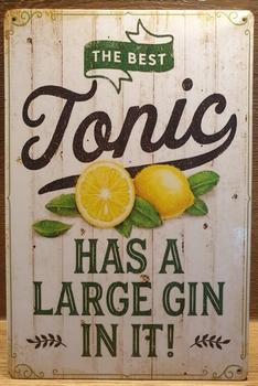 Tonic Large Gin in it Reclamebord metaal