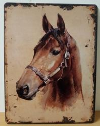 Bruin paard portret metalen wandbord poster
